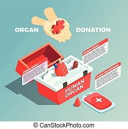 Organ Donation Isometric Composition