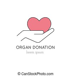 Organ Donation line icon - Vector thin line icon, heart in...