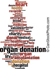 Organ donation word cloud - vertical