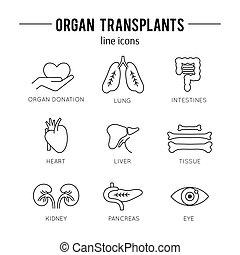 Organ Transplantation icon set