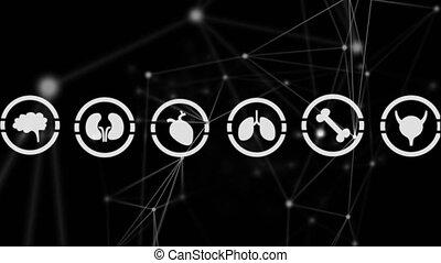 organes, cercles, icônes, asymétrique, différent, lignes