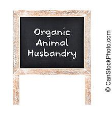 Organic animal husbandry written on chalkboard isolated