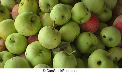 Organic Apples at an Asian Public Market - Pile of green and...