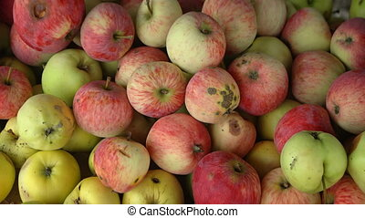 Organic Apples Displayed for Sale at an Asian Market. 1080p...