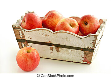 Organic Autumn Glory apples
