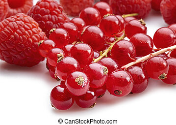 Organic bunch of red currants and raspberries