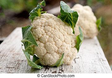 cauliflower - Organic cauliflower on white wooden background...