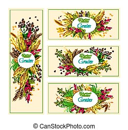 Organic cereals collection edible grains banners