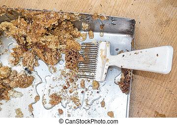 Organic comb capping - comb capping. Organic honey bee comb...