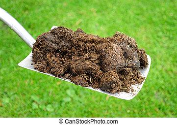 Organic Compost on Gardening Spade. - Fresh organic compost...