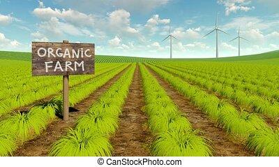 Organic eco farming field and wind turbines 4K - Rural...