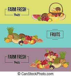 Organic farm product posters set