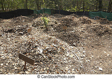 Organic Fertilizer site