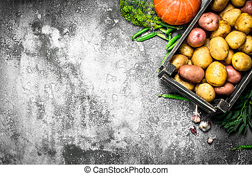 Organic food. Fresh potatoes in a box and other vegetables.