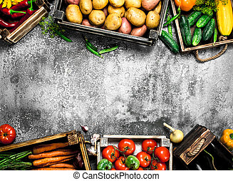 Organic food. Fresh vegetables in boxes.