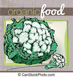 Organic Food illustration