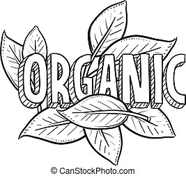 Organic food sketch - Doodle style organic food illustration...