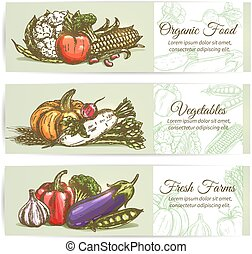 Organic fresh farm vegetables