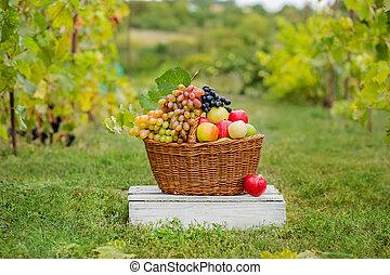 Organic fruit in basket in summer grass.
