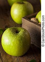 Green Granny Smith Apple - Organic Green Granny Smith Apple...