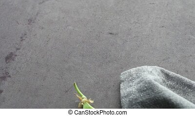 Organic Green Sugar Snap Peas Ready to Eat on cement background. Fly over macro slide.