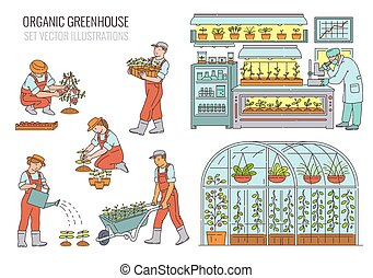 Organic greenhouse with farmers, sketch vector illustrations...