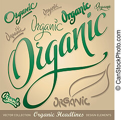 organic hand lettering set (vector) - set of organic...
