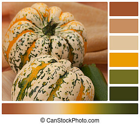 Organic Harlequin Squash. Zucchini. Wooden Board. Palette With Complimentary Colour Swatches