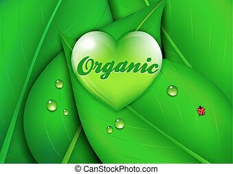 Organic Heart Background
