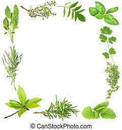 Organic Herbs - Organic herb border of bay leaves, lavender,...