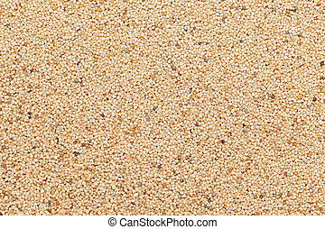Organic Indian White Poppy seeds.