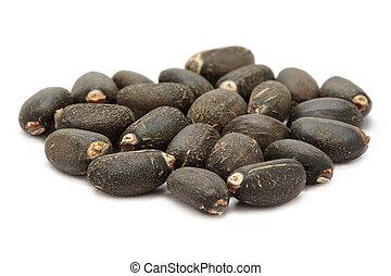 Organic (Jatropha curcas) seeds.