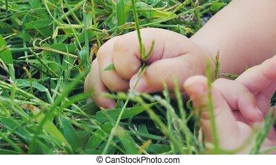Organic life concept. Newborn feeling the earth.
