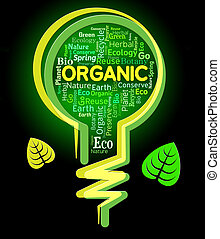 Organic Lightbulb Represents Nature Rural And Environmental