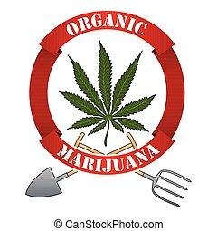 Organic marijuna-cannabis