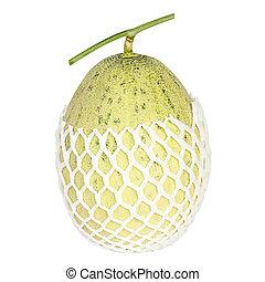 Organic melon isolated on white background