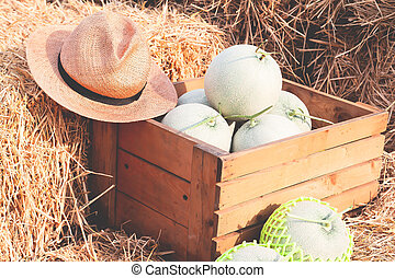 Organic melons in wooden box on straw. Farmer market. Healthy fruit