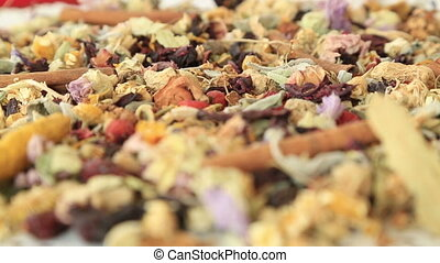 Organic natural different kind of healing herbs