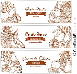 Organic natural fruit food sketch banner