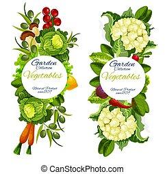 Organic natural vegetables vector farm harvest