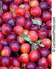 Organic peaches pile