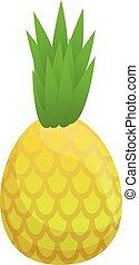 Organic pineapple icon, cartoon style