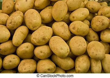 organic potatoes at the market for sale