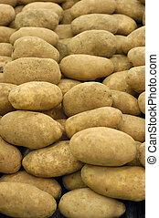potato - organic potatoes for sale at farmers market