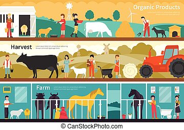 Organic Products Harvest Farm flat interior outdoor concept web