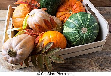 Organic pumpkins in wooden box