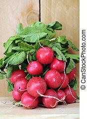 organic radish - bunches of organic radish on wooden shelf