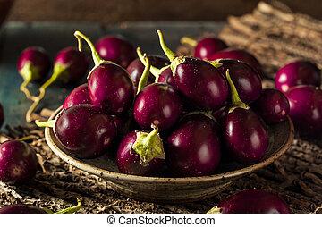 Organic Raw Baby Indian Eggplants