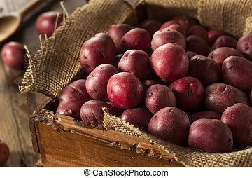 Organic Raw Red Potatoes in a Basket