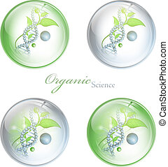 Organic Science glossy balls with DNA and green leaves over ...